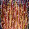 Momentum (2018) Abstract Art Acrylic painting by Nestor Toro